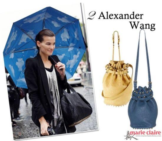 Alexander Wang Rocco手袋
