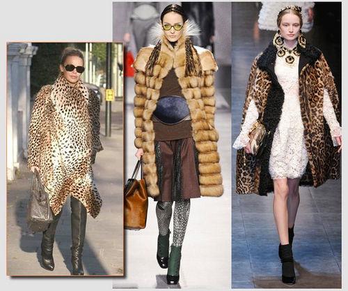 图从左至右:凯莉、Fendi、Dolce&Gabbana